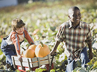 Supporting youth in Agriculture